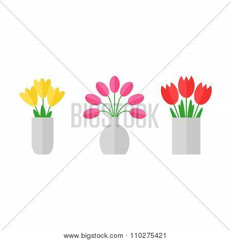 Tulip flowers.