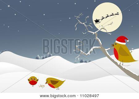 Winter / Christmas Scene
