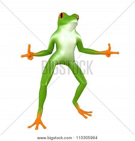 Tropical  posing frog