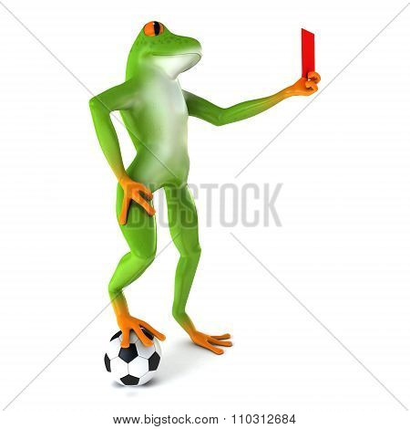 Tropical sport frog