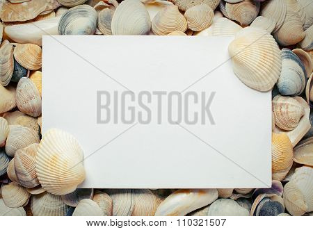 blank sheet of paper on sea Shell background