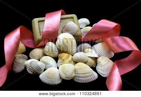 Variety Of Sea And River White Shell, Natural Soap, Pink Ribbon Macro Isolated On Black