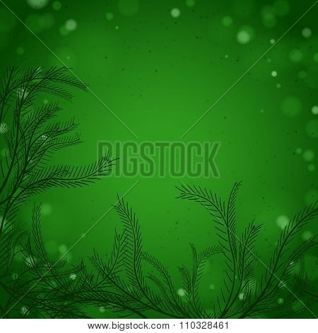 Abstract green background with pine branches and needles