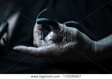 Wrinkled Hand With Long Fingernails