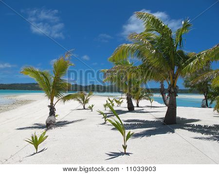 Idyllic tropical beach.