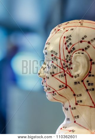 Acupuncture Doll With Markings In Chinese On Blurred Background