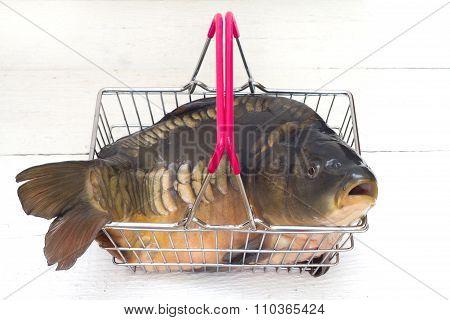 Carp raw fresh fish in the shopping basket