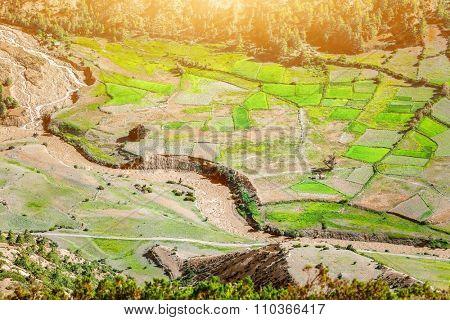Aerial view on Green paddy fields in Nepal, Annapurna trekking