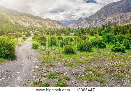 rural road in stone valley in mountains with green bushes and cloudy sky in Nepal, Annapurna trekking