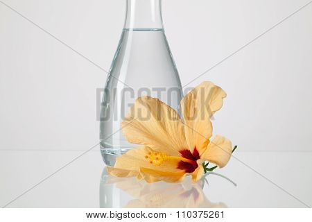 The Vase With Clean Water And Hibiskus Flower