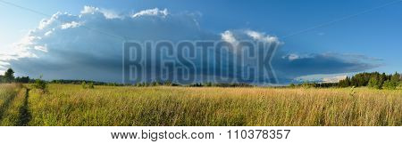 Meadow And Storm Cloud In Sunset Light Panoramic Landscape