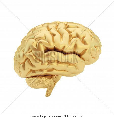 Golden brain isolated on a white background.