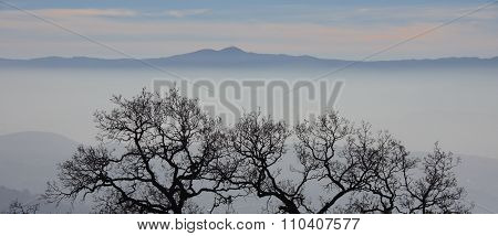 Fog and mist fall over the mountain hilltops of trees in the early morning