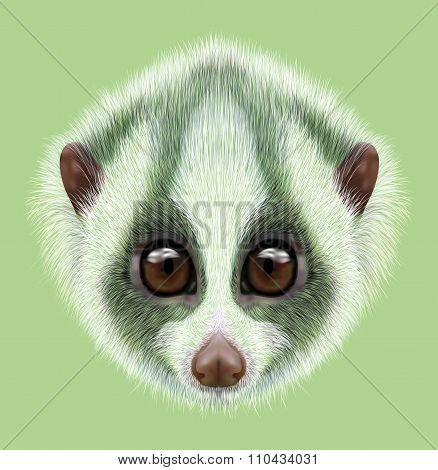 Illustrated Portrait Of Slow Loris.