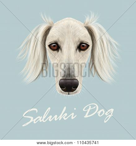Vector Illustrated Portrait of Saluki Dog