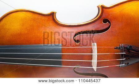 Wood Violin Body Detail  On White