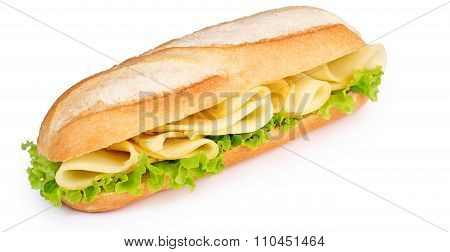 cheese and lettuce sandwich