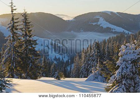Morning Scene In Winter Mountains