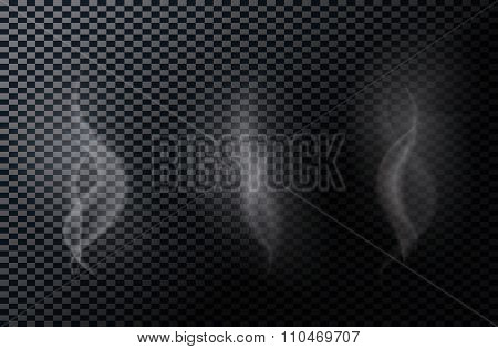 Naturalistic Smoke Isolated on Dark Background. Vector Illustrat