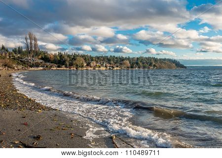 Pacific Northwest Shoreline 2