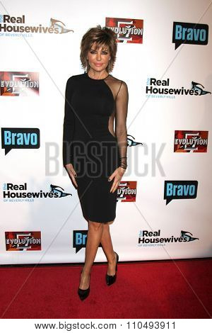 LOS ANGELES - DEC 3:  Lisa Rinna at theThe Real Housewives of Beverly Hills Premiere Red Carpet 2015 at the W Hotel Hollywood on December 3, 2015 in Los Angeles, CA