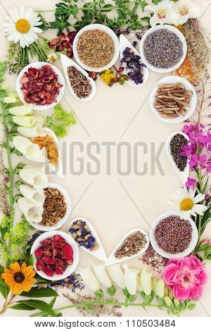 Healing herb and flower selection used in herbal medicine forming a border over speckled handmade cream paper background.