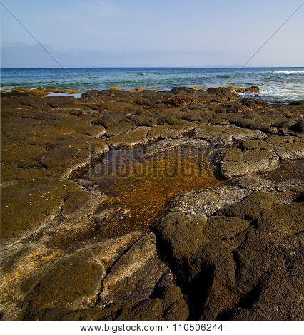 Spain Musk   Rock  Sky  Water  Coastline   Summer In Lanzarote