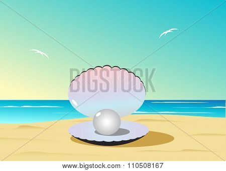 cockleshell with pearls on a beach