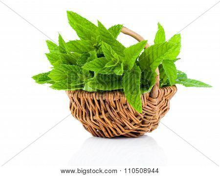 Bundle Of Fresh Spearmint In A Wicker Basket, On A White Background