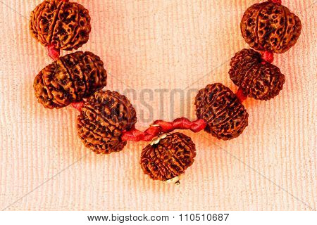 Closeup of powerful combination of rudraksha garland on a light blurred background ~ depth of field