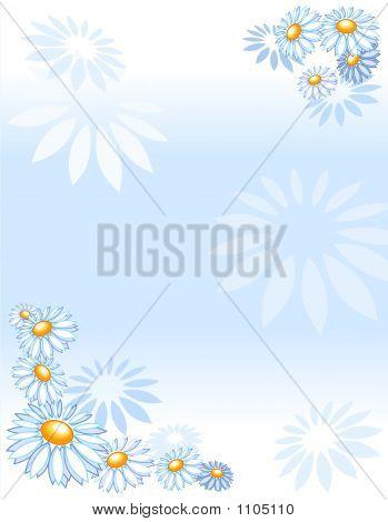 Background Marguerites