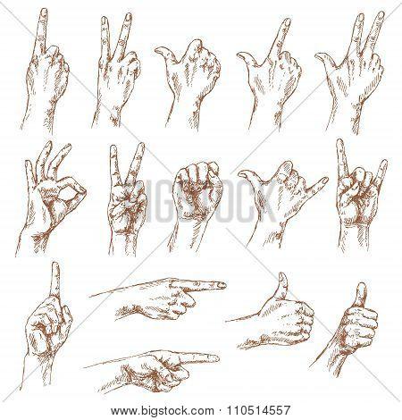 Sketch Of Hand Gestures.