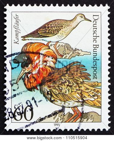 Postage Stamp Germany 1981 Ruff, Sea Birds
