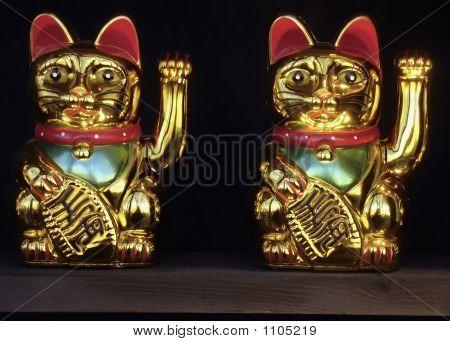 Ornamental Cats