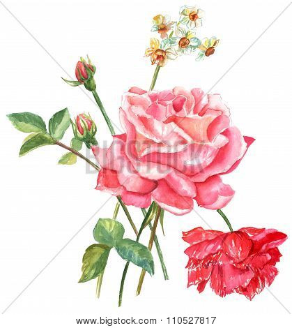 A vintage style watercolour drawing of a bouquet of roses and other flowers on a white background
