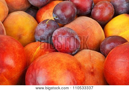 Plum And Peach