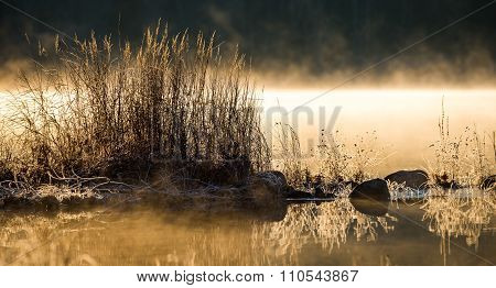 Sunlight glowing on frost coated rocks and grass at water's edge.