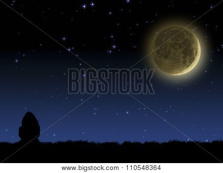 Girl watching the stars and Moonrise