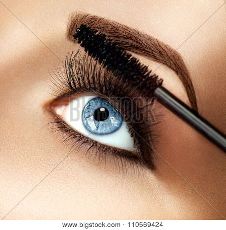 Mascara applying closeup, long lashes. Mascara brush. Eyelashes extensions. Make-up for blue eyes. Eye make up apply