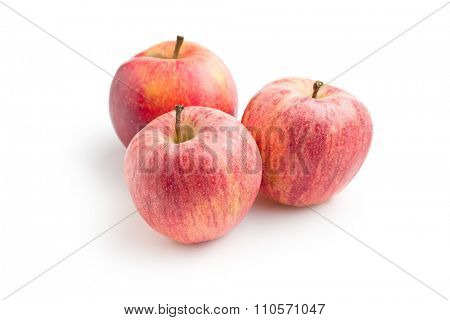 red autumn apples on white background