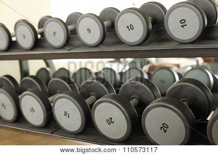 bright sport room