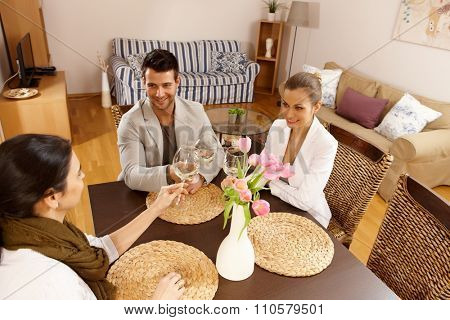 Young companionship sitting at table, clinking glasses at home.