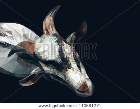Vector polygonal goat illustration.