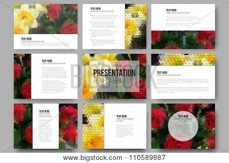 Set of 9 templates for presentation slides. Roses and daffodils. Abstract multicolored backgrounds.