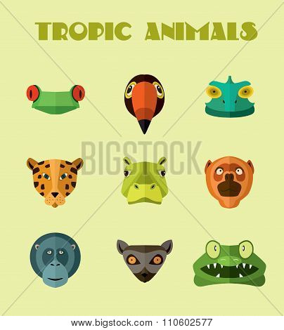 Tropical animals icons.