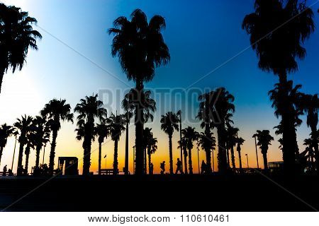 Silhouettes Of Palm Trees Against A Beautiful Sunset With People.