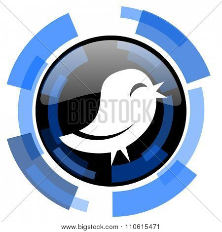 twitter black blue glossy web icon