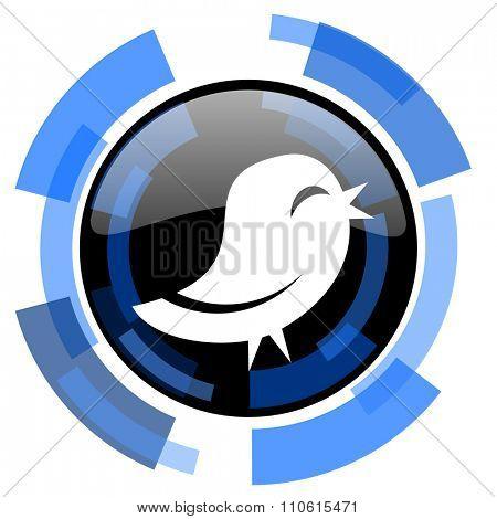 twitter black blue glossy web icon