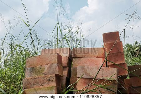 Pile Of Red Bricks In Dense Grasses