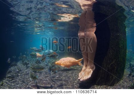 Underwater Picture Of Female Legs And Koi Fishes In Pond